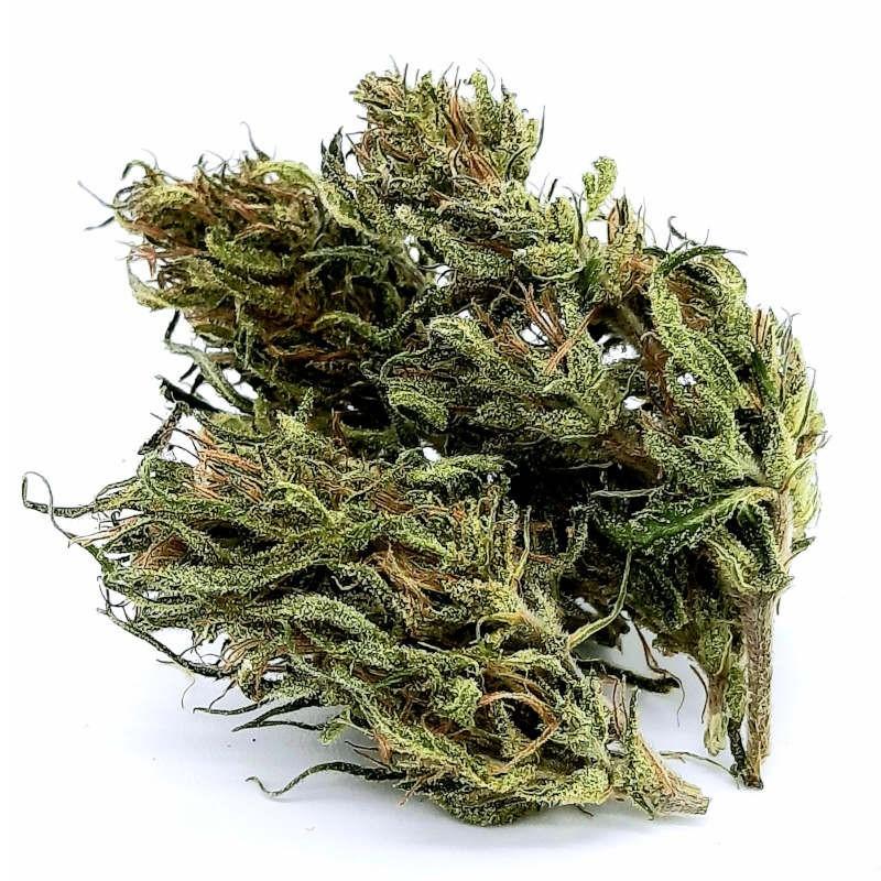 CBD NAG-OUT Cannabis Outdoor