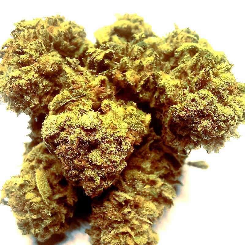 CBD Green Therapy Cannabis...